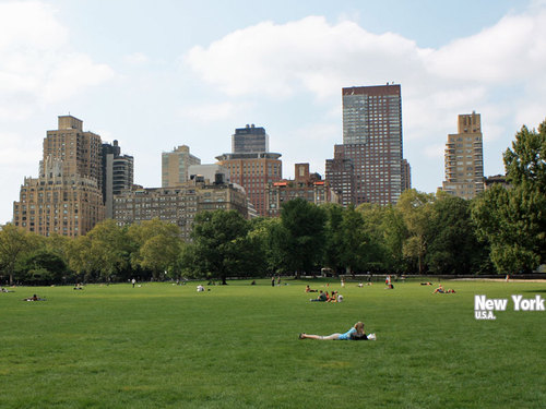 ニューヨーク・セントラルパーク(アメリカ)